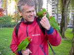 San Francisco Man Gets Mobbed By Feral Conure Parrots In Public Park animaux provenant de Conure