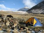 Backpacker Tent, Dog, Yak and Mountains in Himalayas animaux de                   Janick76 provenant de Yak