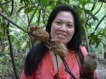 Three Tiny Tiny Tarsiers Seen To Scale With Dark-Haired Women animaux provenant de Tarsius